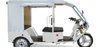 В Индии появился зеленый транспорт